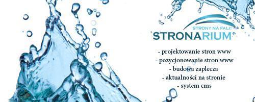 logo_stronarium